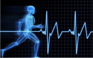 Image of human body xray in running motion